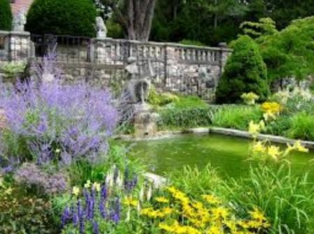 cranbrook garden 2